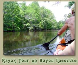 Louisiana kayak tour